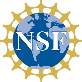 nsf4.jpg
